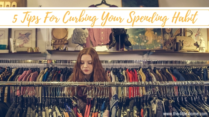 Conscious Consumer : 5 tips to curb your spendinghabit